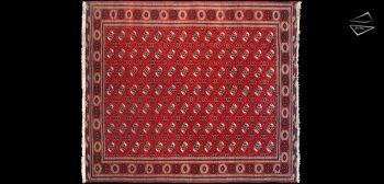 12x14 Bokhara Design Square Rug