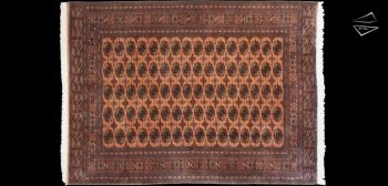 8x11 Fine Bokhara Rug