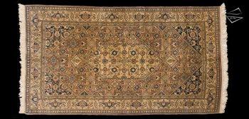 5x9 Persian Design Rug
