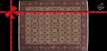8x11 Persian Bijar Rug