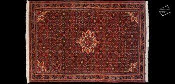 7x10 Persian Hoseinabad Rug