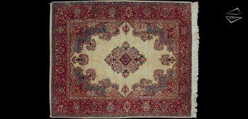 9x11 Persian Sarouk Rug