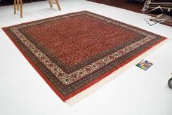 Herati Design Square Rug
